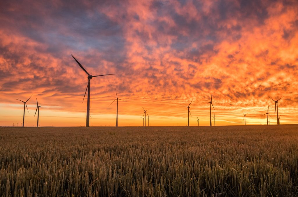 Wind turbines in field at sunset / CC0 Karsten Wurth