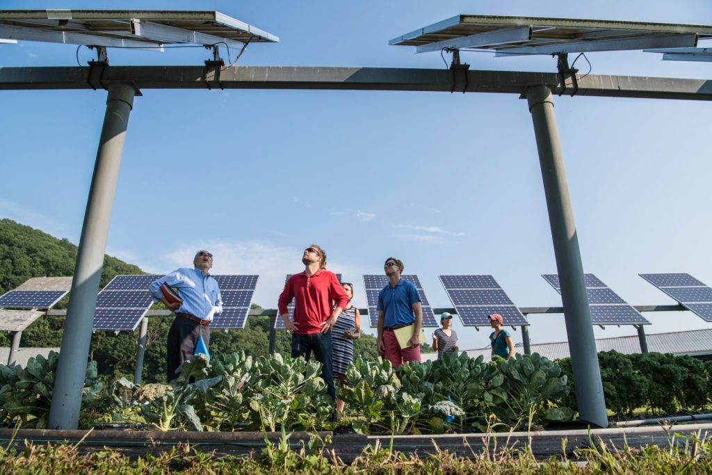 People inspecting solar panels in a field/ CC0 Science in HD