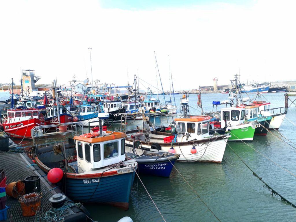 Fishing boats / Grace O'Sullivan MEP