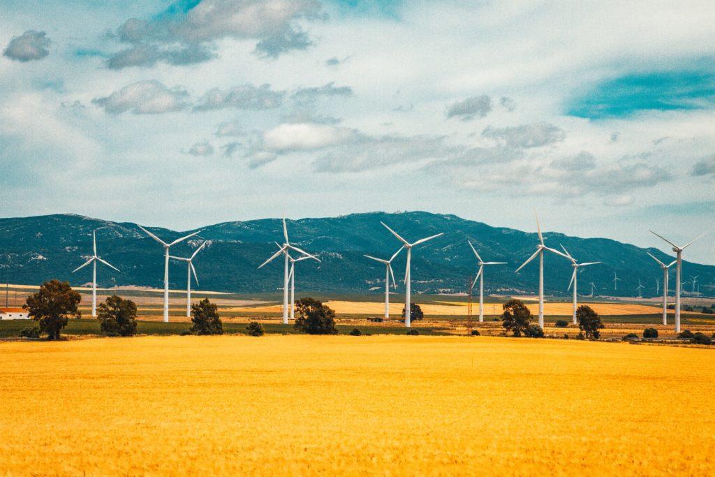 Wind turbines in a field/ CC0 raimond-klavins